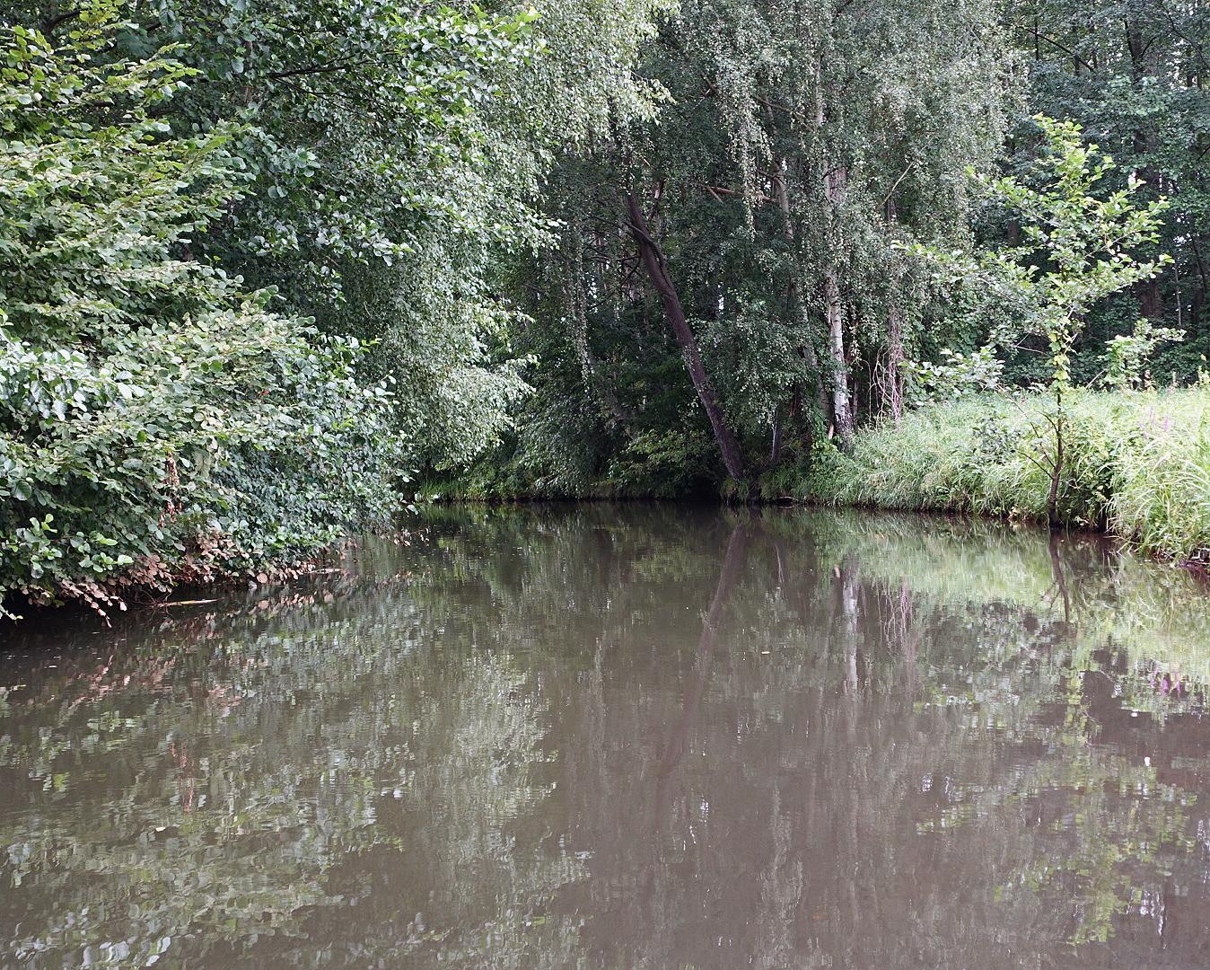 Kanal im Spreewald an einem verregneten Sommertag