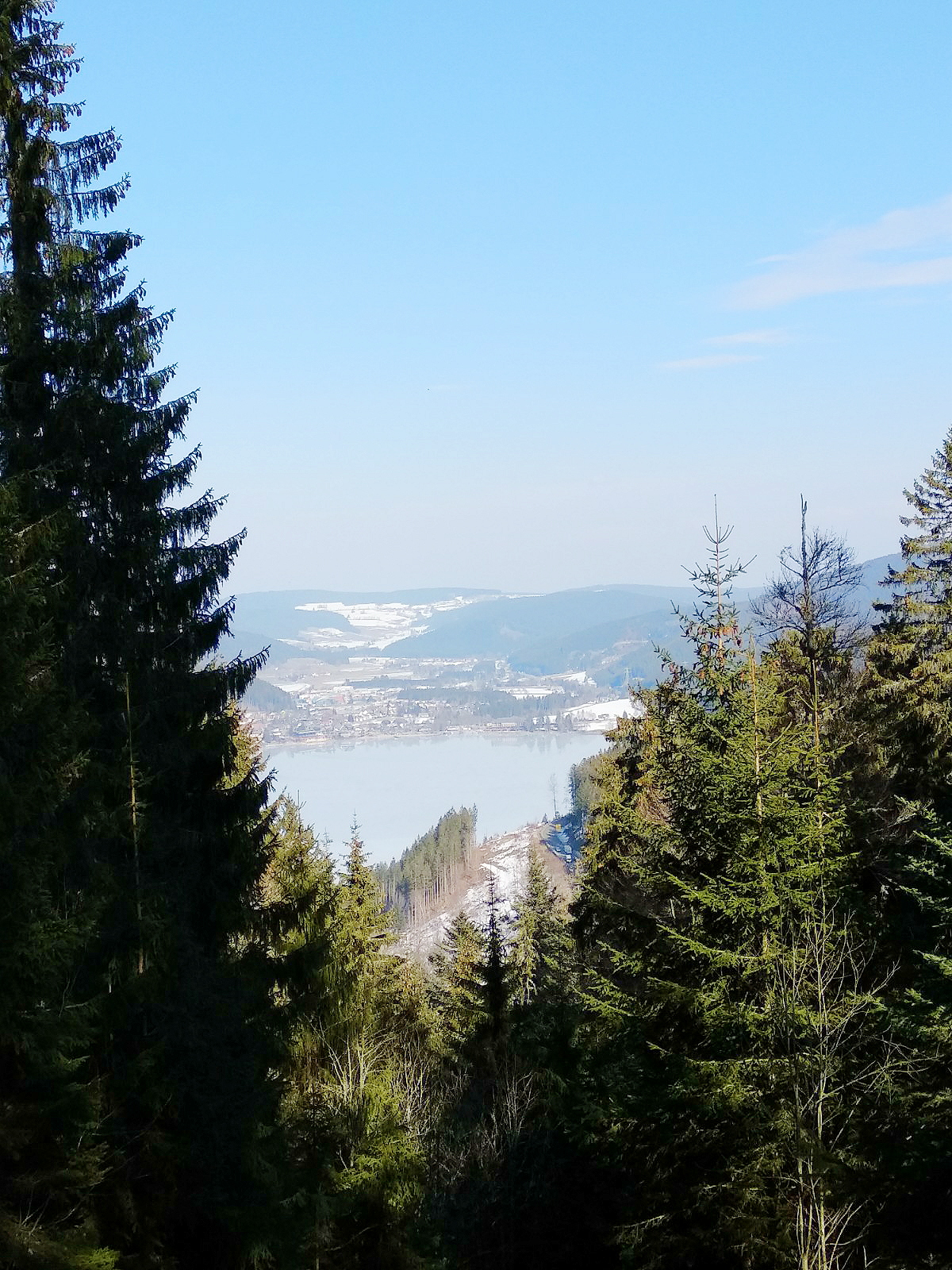 Spaziergang im Wald: Der Titisee Blick